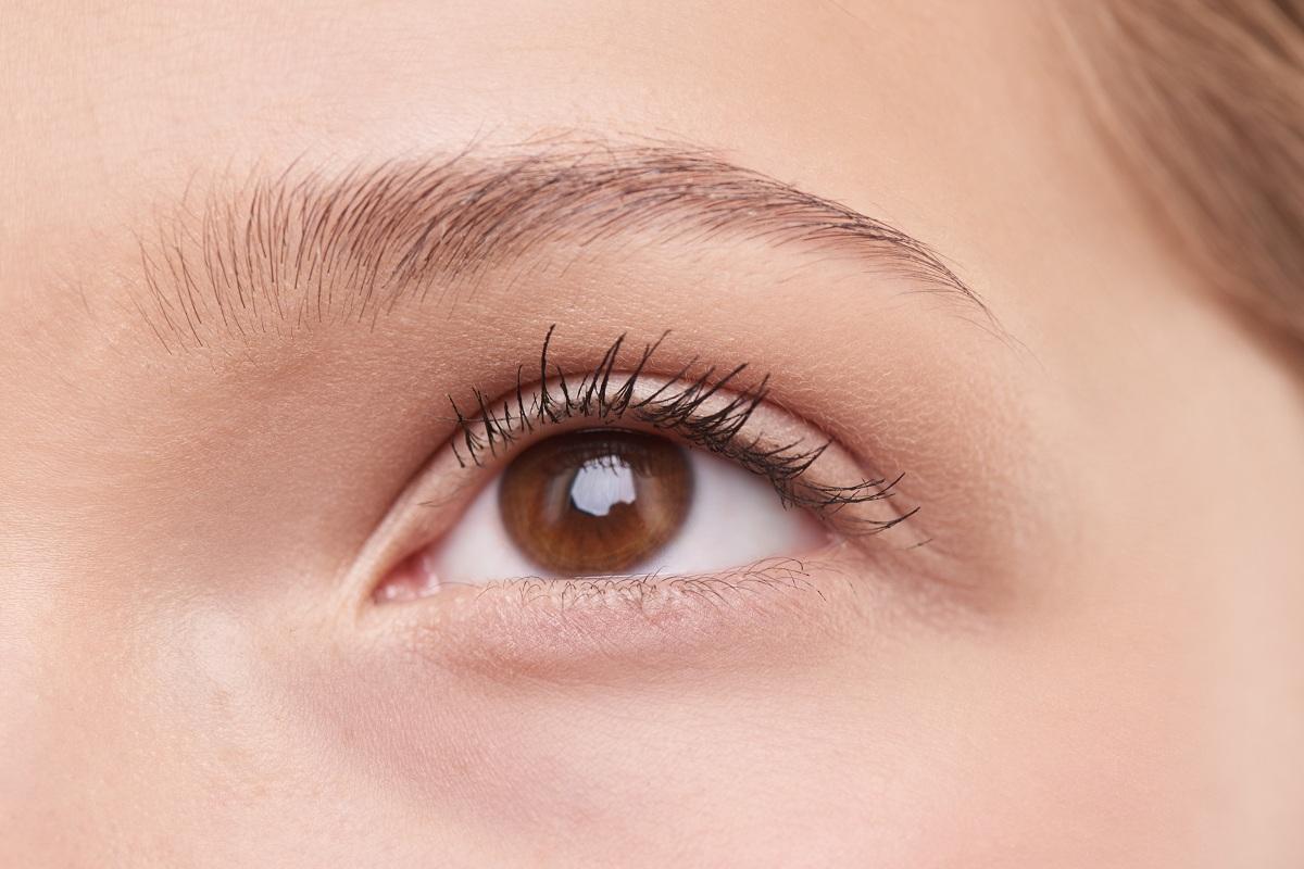 HD Eyebrows